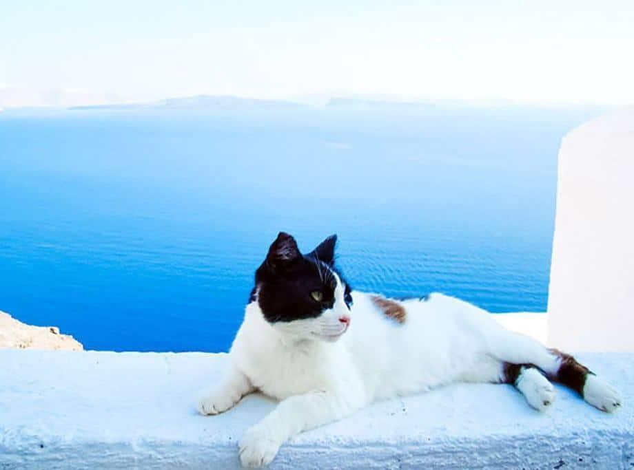 Santorini Summers